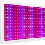 morsen 2400w led grow light