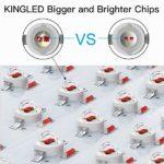 King Plus 1200W LED's