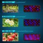 Philzon 600W LED Modes