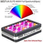 Bestva Series 600W LED Full Spectrum